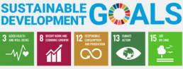 Globala målen trece hållbarhet